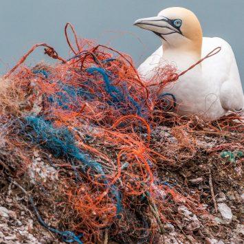 Reciklaža po morsko: zavržene ribiške mreže so postale oblačila